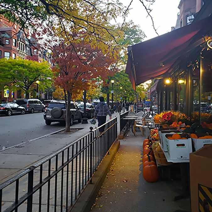 fall foliage walking down the street in boston